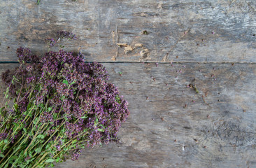 oregano beam lying on a wooden table background