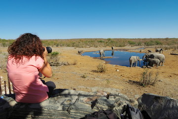 Woman takes pictures of a group of elephants at a waterhole.