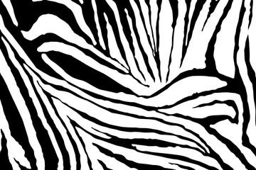 Zebra Stripes Pattern Vector