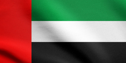 Flag of United Arab Emirates waving with fabric texture