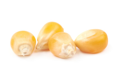 Pile of corn kernels isolated