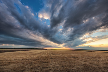 Dramatic clouds over the field after harvest Wall mural