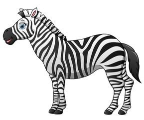 Happy zebra cartoon isolated on white background