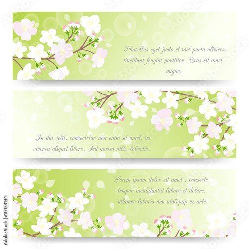 Wall mural Spring banners with blossoming tree brunch