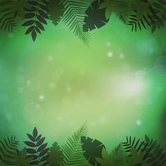 Jungle vegetation background