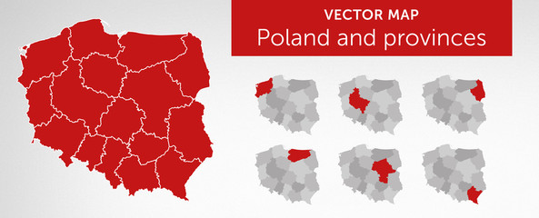 Vector map of country Poland and voivodeships vol.2