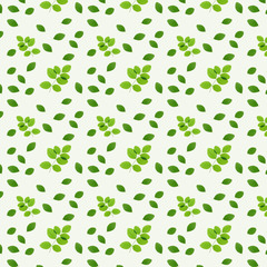 green leaves on white background for natural concept