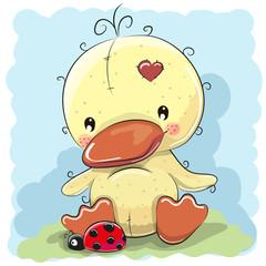 Duck with ladybug