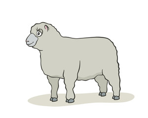Cute sheep cartoon.