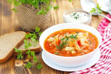 Traditional Russian Ukrainian vegetable borscht soup