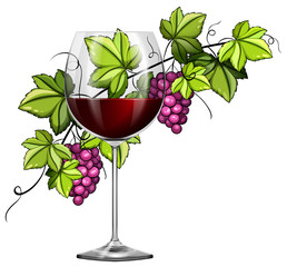 Red wine in glass and grapes in background