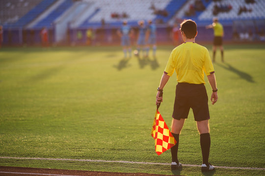 referee soccer. referee is on the field