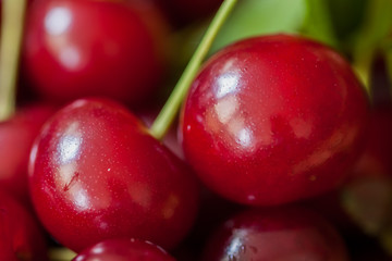 Red fresh cherries closeup