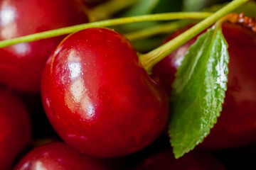 Berry of juicy ripe cherries closeup