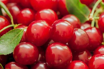 Appetizing, juicy, bright cherries closeup