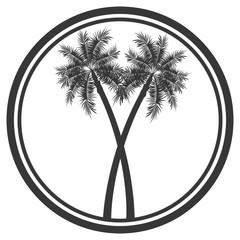 flat design palm tree emblem icon vector illustration