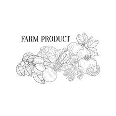 Farm Products Still Life Hand Drawn Realistic Sketch