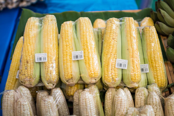 organic vegetable corn