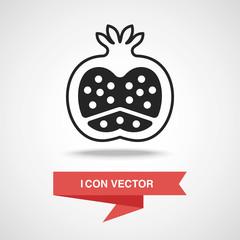 fruits pomegranate icon