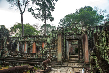The temple complex of Angkor.