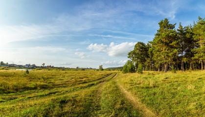 летний пейзаж с сосновым бором на берегу реки и грунтовой дорогой, Россия, пейзаж