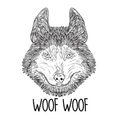 Sketch of head Husky Dog or wolf. Vector Illustration