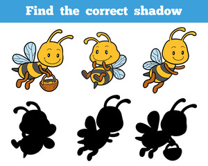 Find the correct shadow about bees