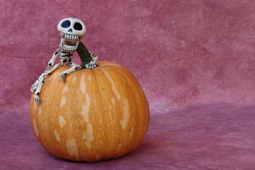 SKELETON FUNNY RISEN UP A PUMPKIN WITH PURPLE BACKGROUND HORIZONTAL