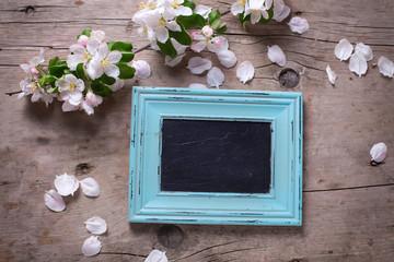 Empty blackboard  and tender apple tree flowers