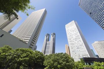 新宿高層ビル街 超広角撮影 春 快晴 青空 新緑 緑溢れる町並み