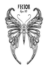 butterfly charcoal sketch vector eps 10