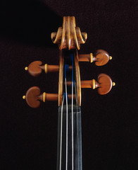 Close up of neck of stradivarius violin
