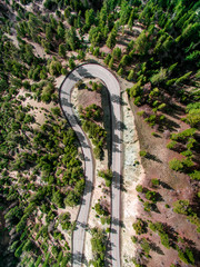 Road bending through trees, view from above