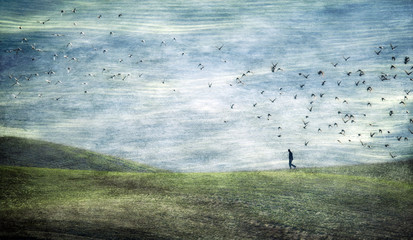Abstract image of person on rolling landscape and flock of birds