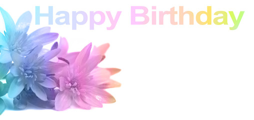 Say Happy Birthday with Flowers - soft pastel rainbow colors applied to close up of daisies in left corner and HAPPY BIRTHDAY words above with copy space