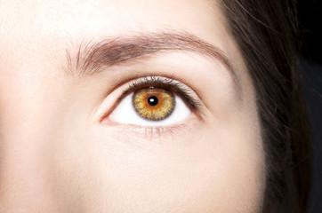 Beautiful insightful look brown woman's eye