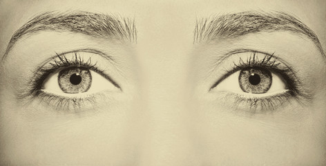 Beautiful insightful look vintage woman's eyes.