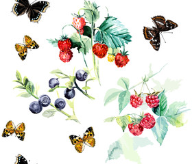 Seamless berries and butterflies. Hand-drawing watercolor vector illustration.