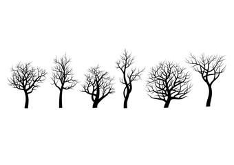 Set of trees sihlouette on white background