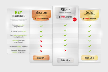 Pricing plans for websites and applications in metal style