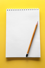School notebook on color background