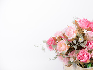 still life interior decoration pink rose flower isolated on white background.
