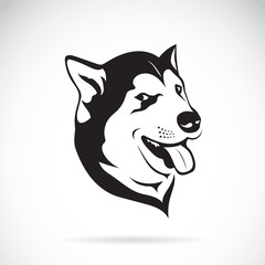 Vector of a dog siberian husky on white background.