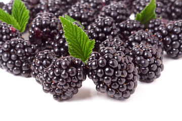 pile of blackberry with leaves isolated on white background