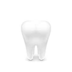White tooth. Healthy tooth. A tooth isolated on a white background. Quality detailing. You can use the information in the brochures, books and promotional flyers.
