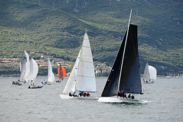 Sailing race in Lake Garda
