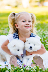 happy little girl playing with Samoyed puppy
