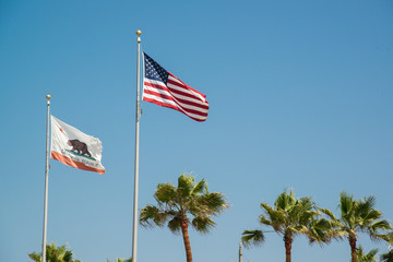 california flag with blue sky and palm tree