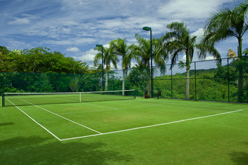 tennis grass court good with  beautiful background