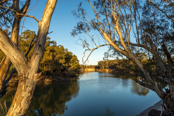Printed kitchen splashbacks Australia On the Murray River early morning